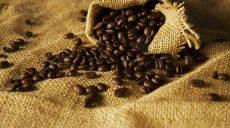 Jak region, z którego pochodzi kawa, wpływa na smak?