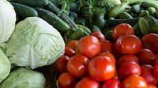 Poznaj polecane produkty spożywcze od lokalnych dostawców