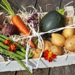Jak należy transportować warzywa i owoce?